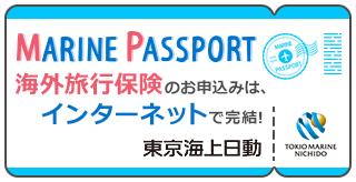 海外旅行保険のお申し込みはインターネットで完結 東京海上日動